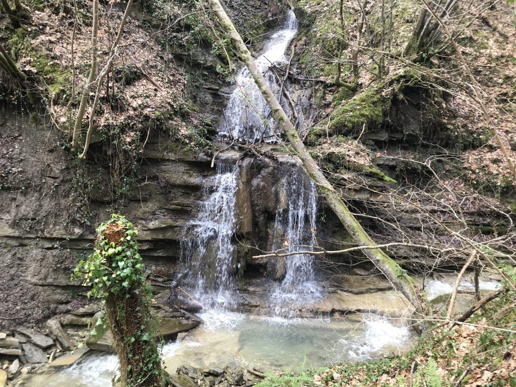 Cascate Bosco di Tecchie