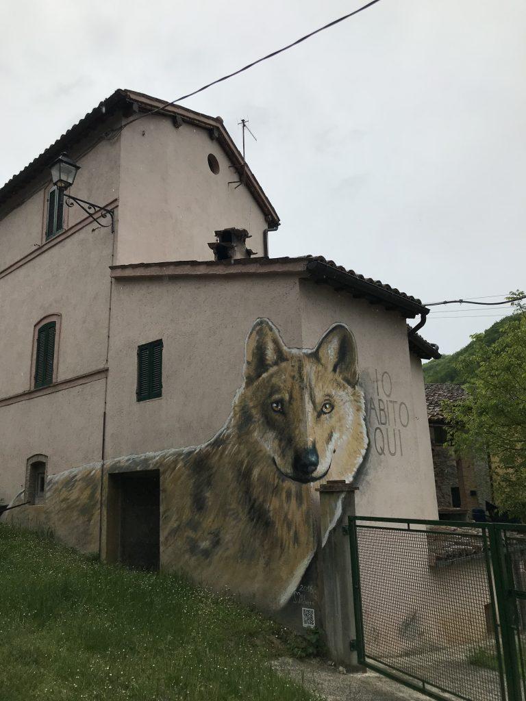 Il lupo di Braccano