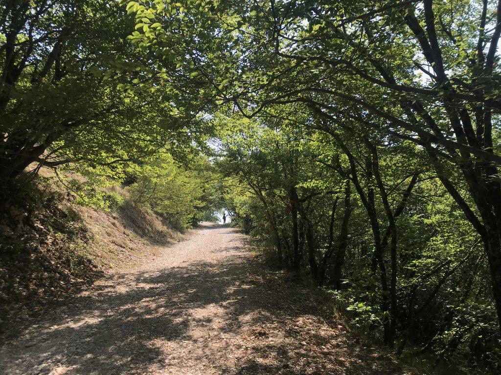 Strada verso il Monte Strega